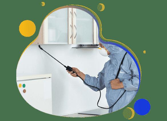 Same Day Pest Control Service
